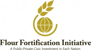 Flour Fortification Initiative